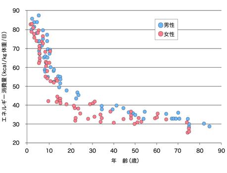 年齢別に見たエネルギー消費量([1]p.60より転載)